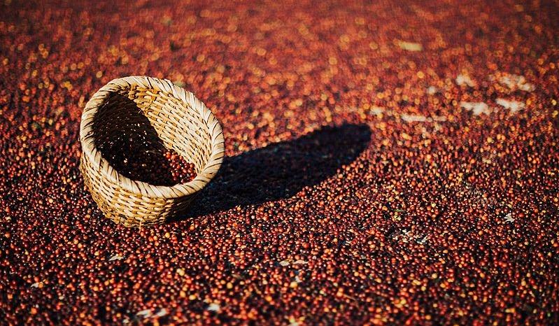 cafe-costa-rica