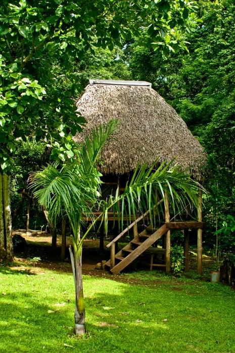 Amérique Centrale _ Eco lodge _ Panama