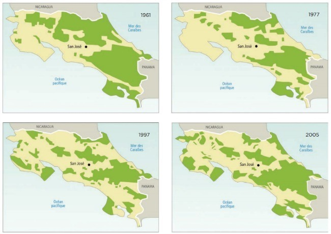 déforestation et reforestation