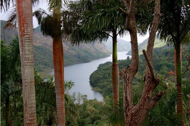 Le cours d'eau descend jusqu'au lac Hanabanilla