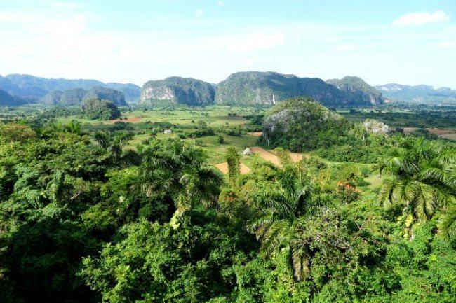 La vallée de Viñales avec ses mogotes au loin