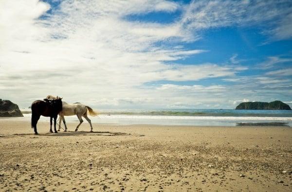 Manuel Antonio, plus belles plages du Costa Rica