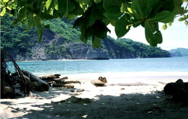 Une belle plage de l'Isla Tortuga au Costa Rica