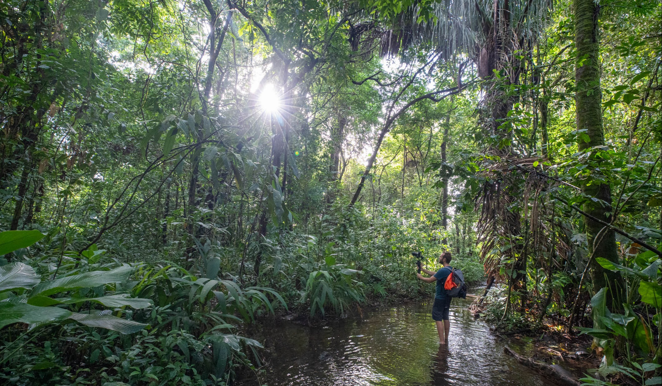 photo-bastien-jungle