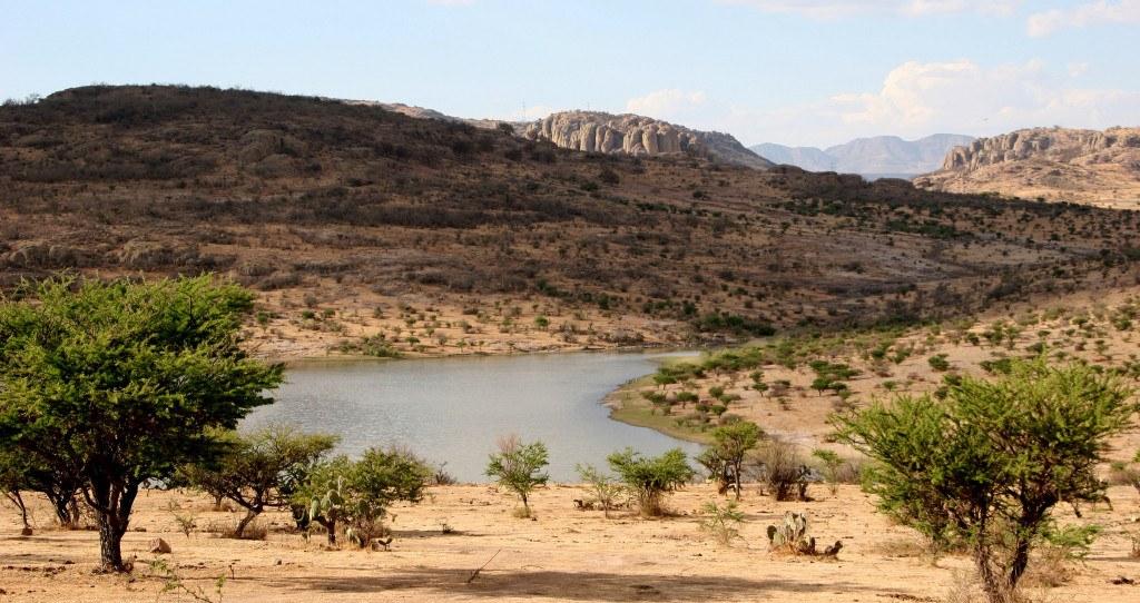 Quand partir au Mexique : paysages désertiques du centre du pays ©Comisión Mexicana de Filmaciones